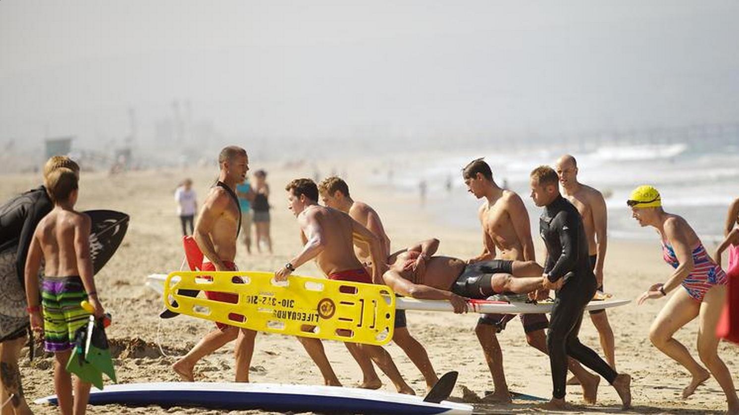 shark attack in manhattan beach