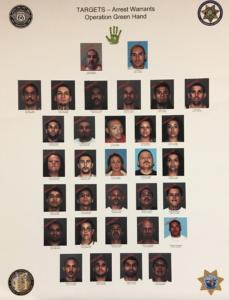 Operation Green Hand (Photo courtesy of Sheriff's Public Affairs)
