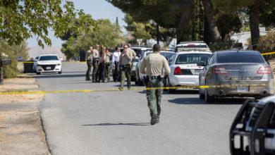 Murder investigation underway after man found shot dead in