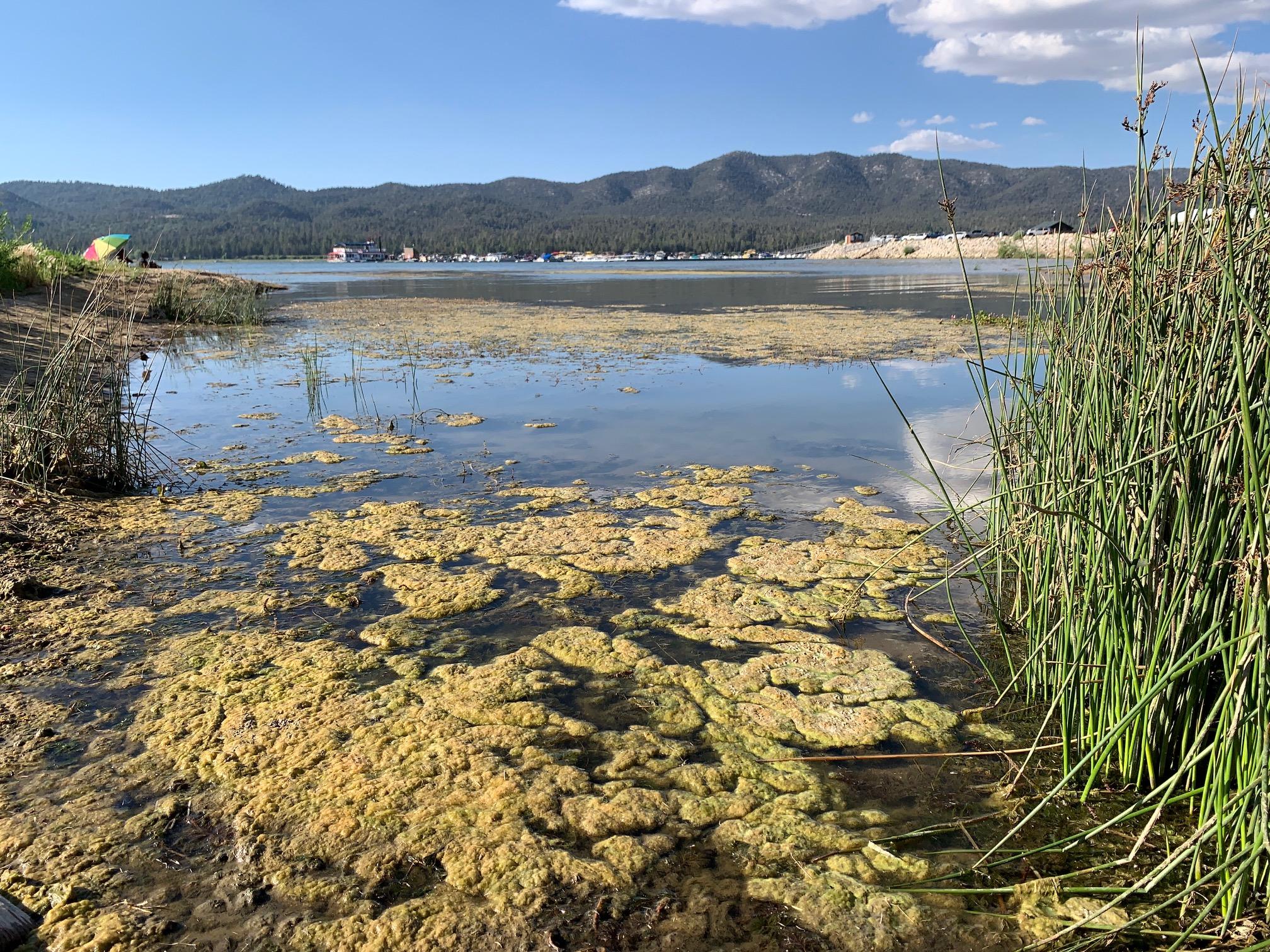 Big Bear Lake on 7/26/20 near Rotary Pine Knot Park. (Hugo C. Valdez, VVNG.com)