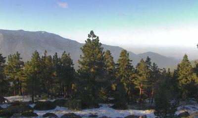 snow dusting in snow summit